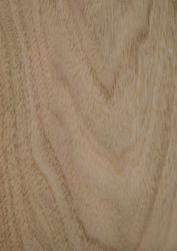 楸木-酒店餐饮公装项目常用木料