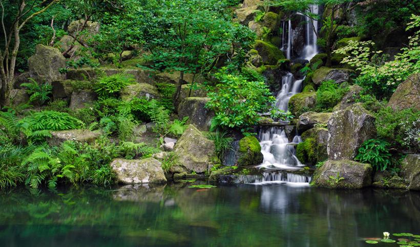 介绍植物对新中式风格园林景观营造的方式
