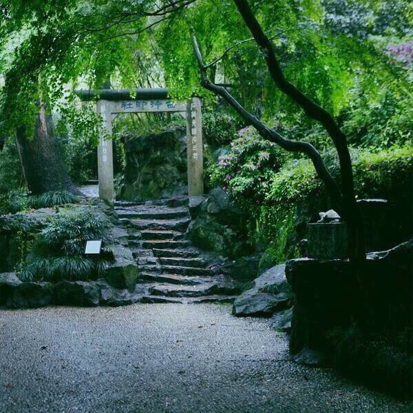 寸石生情 中式古典园林山石造景之美
