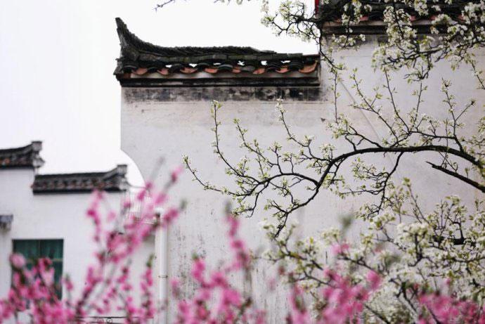 融合中国建筑美学的中式院墙 古观幽雅的飘渺之境