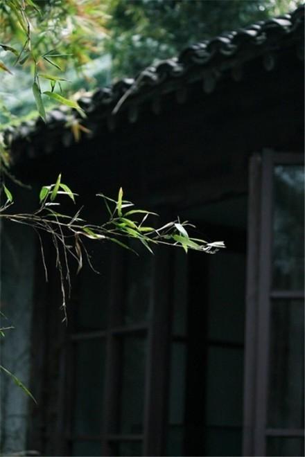 中式古典园林庭院景观