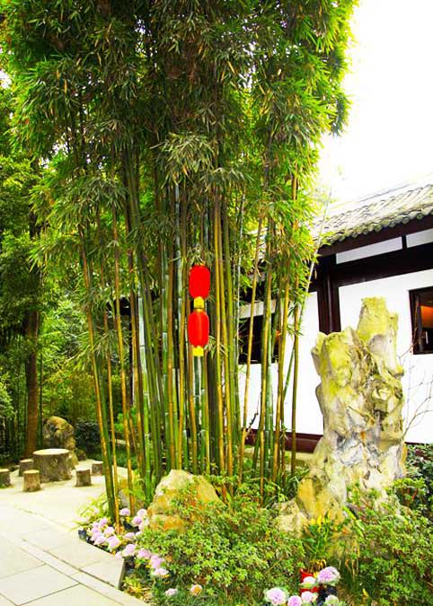 中式古典园林清雅竹景--诗情画意音韵幽玄